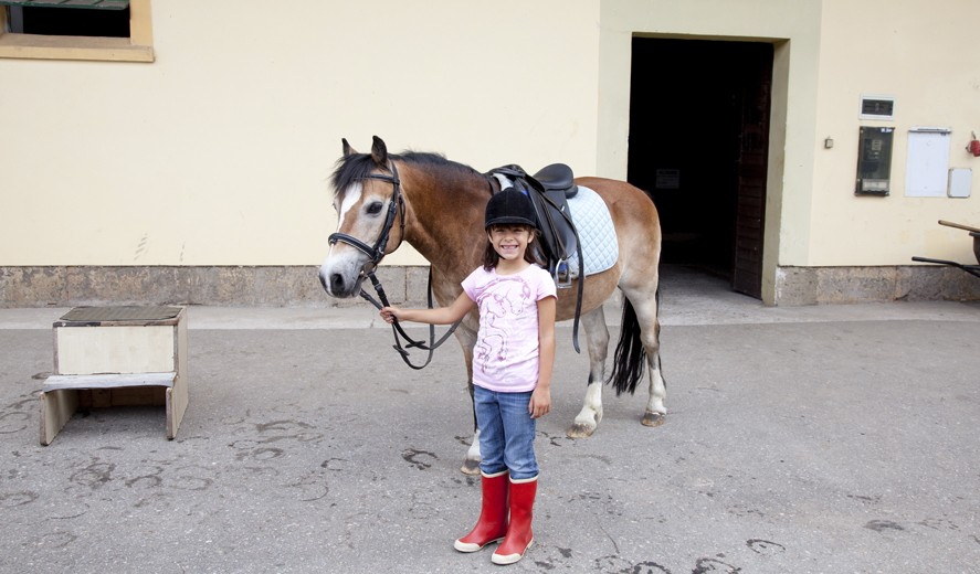 Horse Riding Schools in Torrevieja