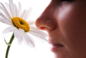 В Торревьехе обещают решить проблему запаха очистных сооружений