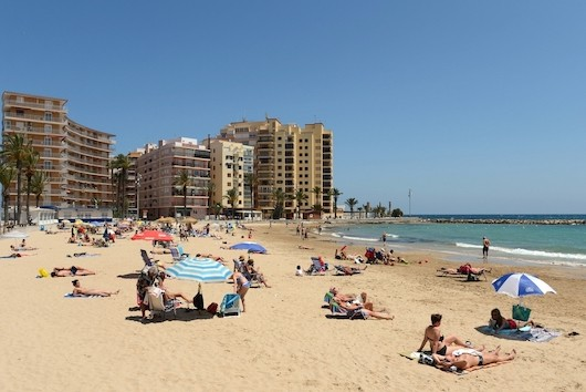 Apartments in Torrevieja ID 5328