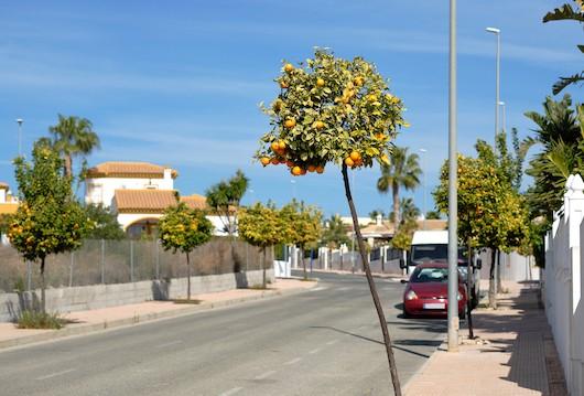 Где купить дом в Испании