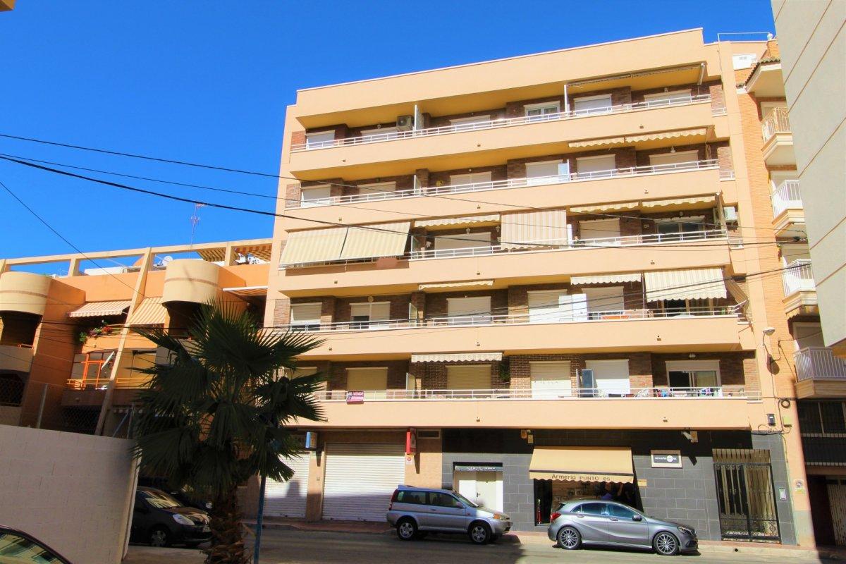 Апартаменты в Торревьеха ID 5062