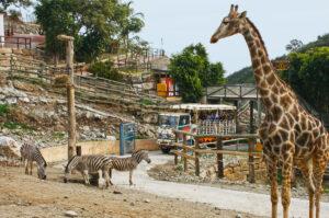 Город Эстепона – уютная гавань на Коста-дель-Соль
